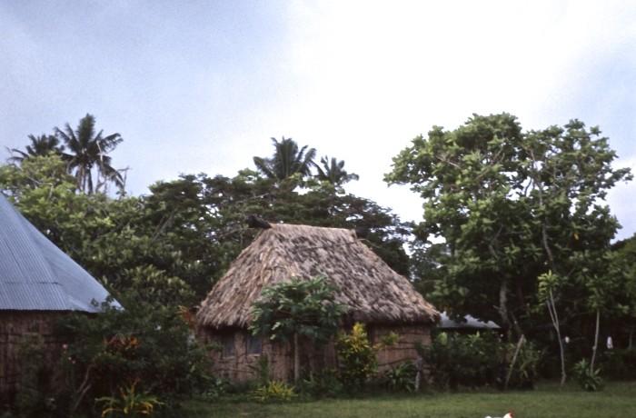 Fiji 1990 Land