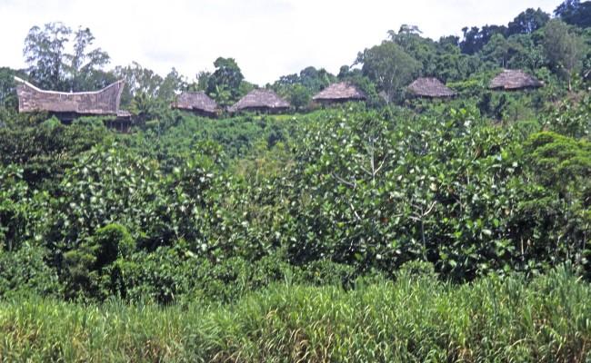 PNG-Land06