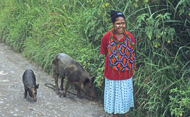 A young woman out walking her pigs