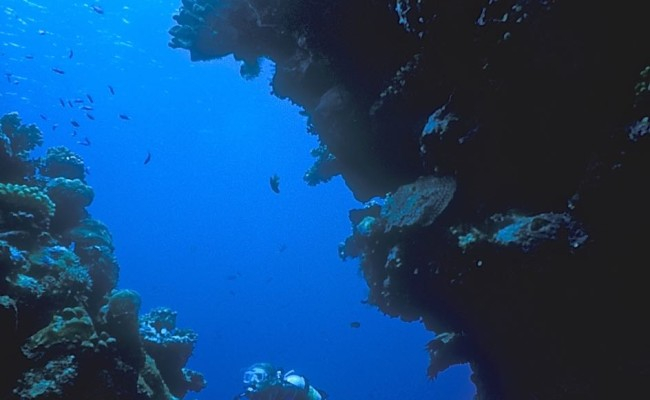 The coral heads form many large slots and passages – all suitable for exploring