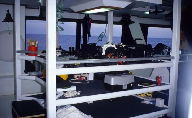 TCA-II 2006 Diving04