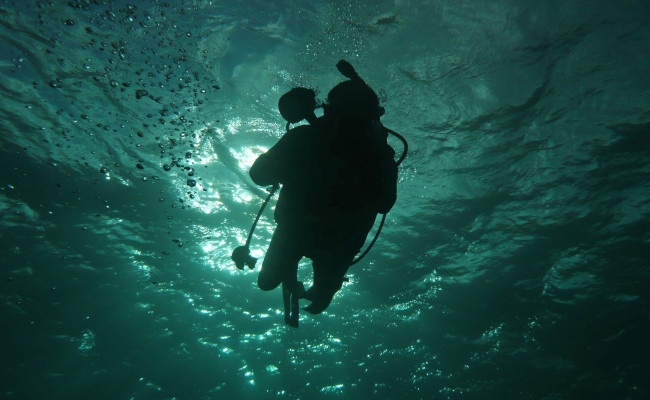 U50 H-10083 Diver Silhouette