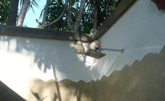 Wakatobi Resort12