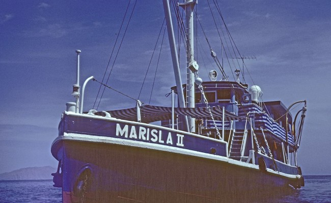 baja79-001 Marisla Bow Shot